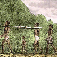 Slaveri och triangelhandel