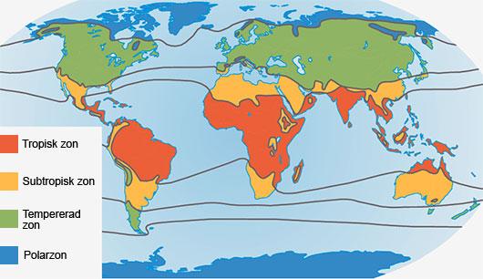 Karta Over Varldens Bergskedjor.Vaxtlighet Och Vatten Geografi So Rummet