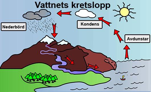 Bildresultat för vattnets former